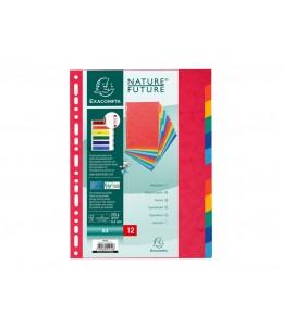 Exacompta Nature Future - Intercalaire - 12 positions - A4 - couleurs tachetées assorties