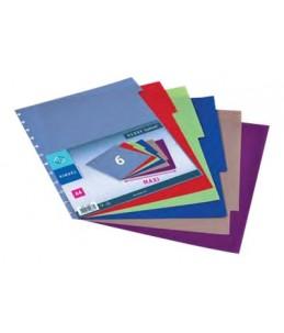 Viquel Geode MAXI - Intercalaire - 6 positions - couleurs assorties
