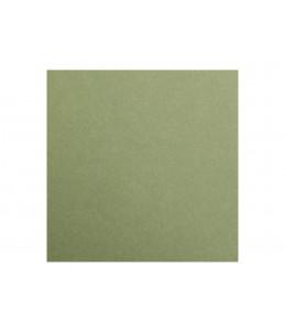 Clairefontaine MAYA - Papier à dessin - 50 x 70 cm - leaf green